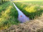 Super ballonvaart vanaf startlocatie Horst dinsdag 5 juni 2018