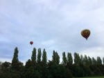 Magnifieke luchtballon vaart in de omgeving van Beesd op zaterdag  8 september 2018