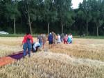 Feestelijke ballon vlucht vanaf startlocatie Hendrik-ido-ambacht zondag 22 juli 2018