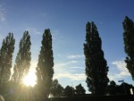 Exceptionele luchtballon vaart gestart in Zwolle zondag  5 augustus 2018