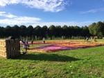 Fabuleuze luchtballonvaart vanaf startveld 's-hertogenbosch op zondag 9 september 2018